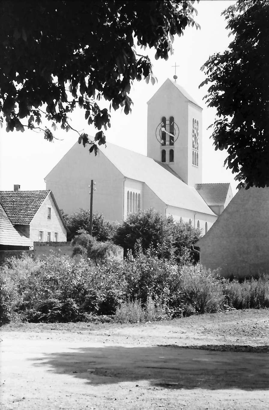 Neuenburg: Kirchturm von Westen; durch Bäume, Bild 1