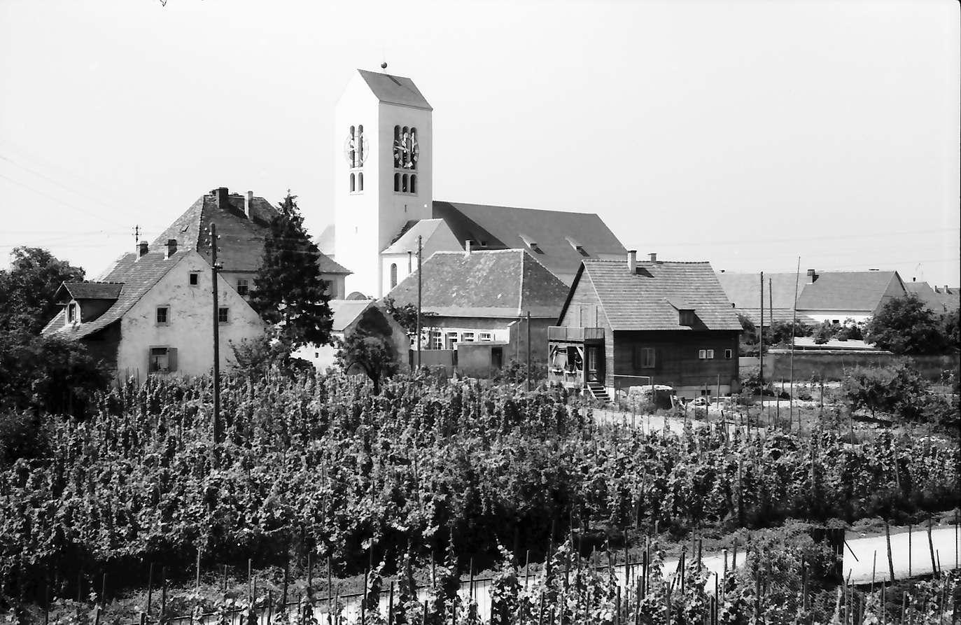 Neuenburg: Kirchturm; Vordergrund Weinbau, Bild 1