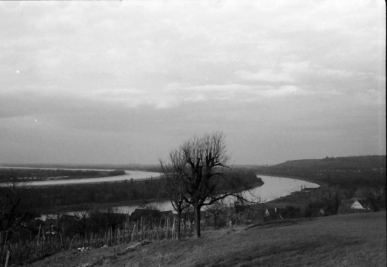 Rheinweiler: Rhein und Rheinseitenkanal, Bild 1