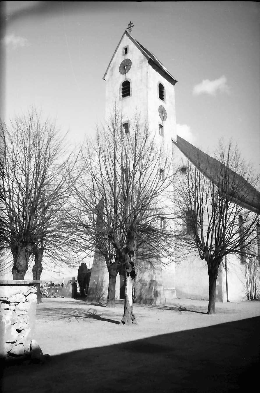 Steinenstadt: Kirche, Bild 1