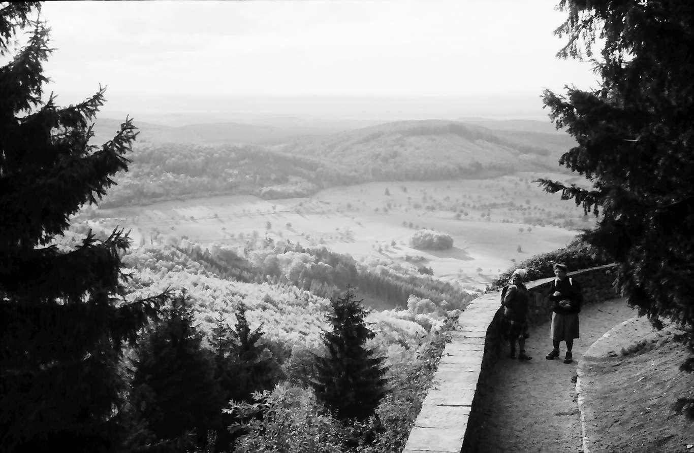 Schliengen: Schloss Bürgeln; Umgang am Schlossgarten, Bild 1