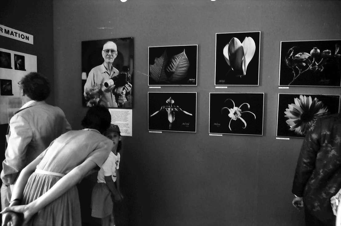 32. Tagung 1982 Physiker; Mainau: Ausstellung des fotografischen Werk Graf Lennart Bernadottes im Schloß: Bild im Bild: Graf Lennart Bernadotte mit großem Objektiv, Bild 1