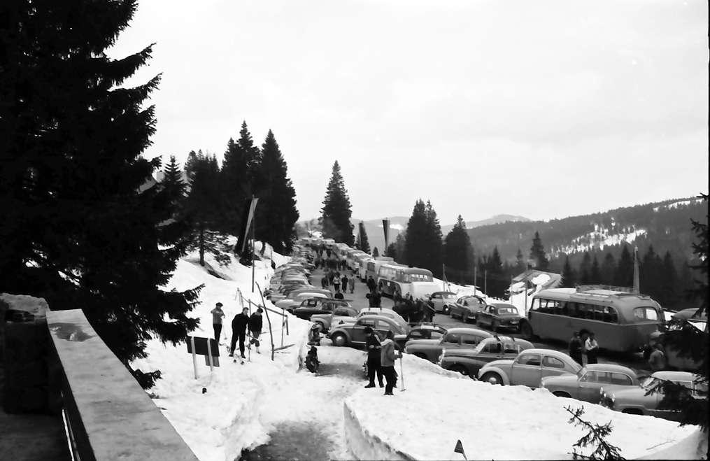 Feldberg: PKW Parkplatz; links Tanne, Bild 1