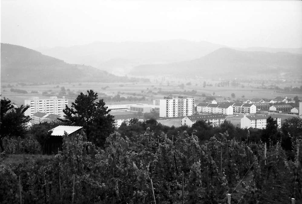 Denzlingen: Blick vom Berg auf Neubaugebiet, Bild 1