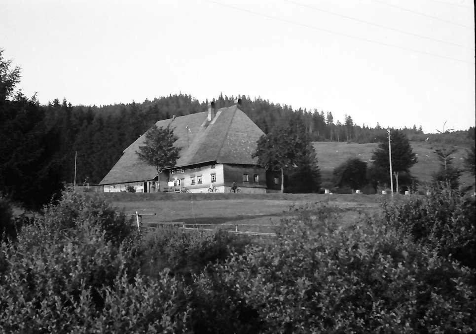 Schluchsee: Hof, Bild 1