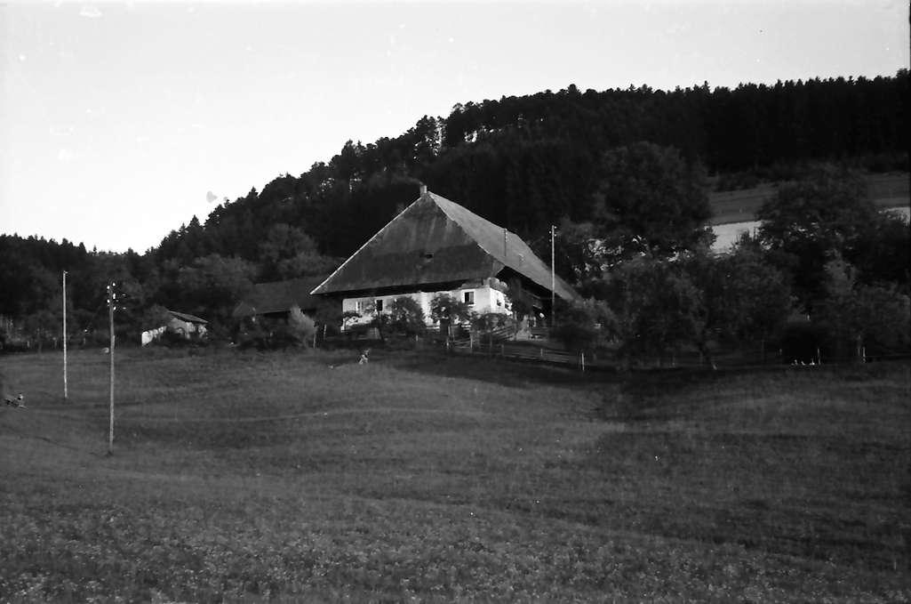 Himmelreich: [Burg-Höfen; Kirchzarten: Schweizermelcherhof], Bild 1