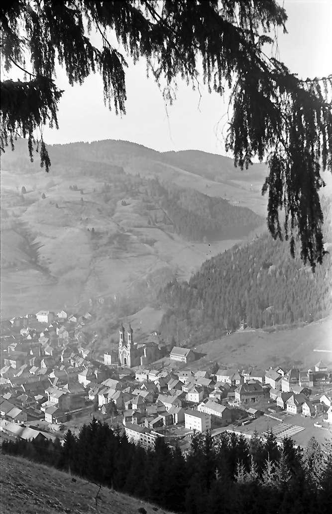 Todtnau: Gesamtansicht vom Hasenhorn; Vordergrund Tannenzweige, Bild 1