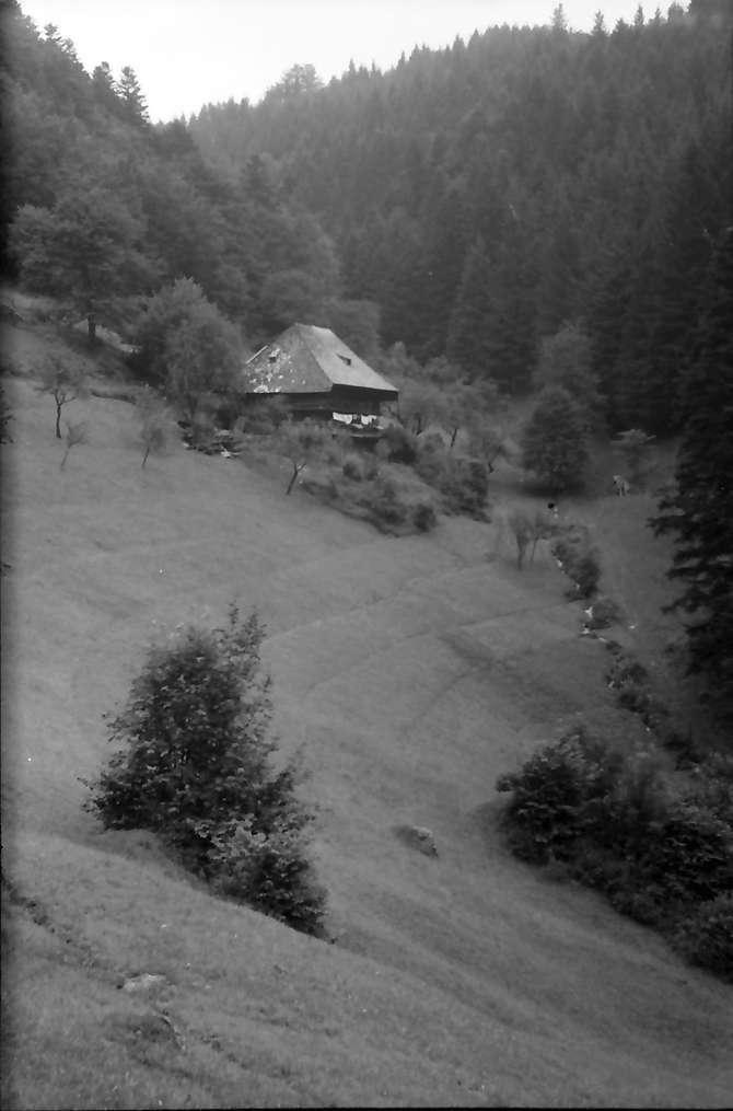 Wagensteig: Das Lochhäusle; nähe Spirzen, Bild 1