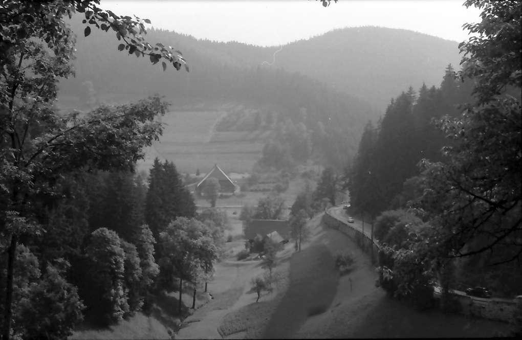 Nussbach: Gutachtal bei Nussbach, Bild 1