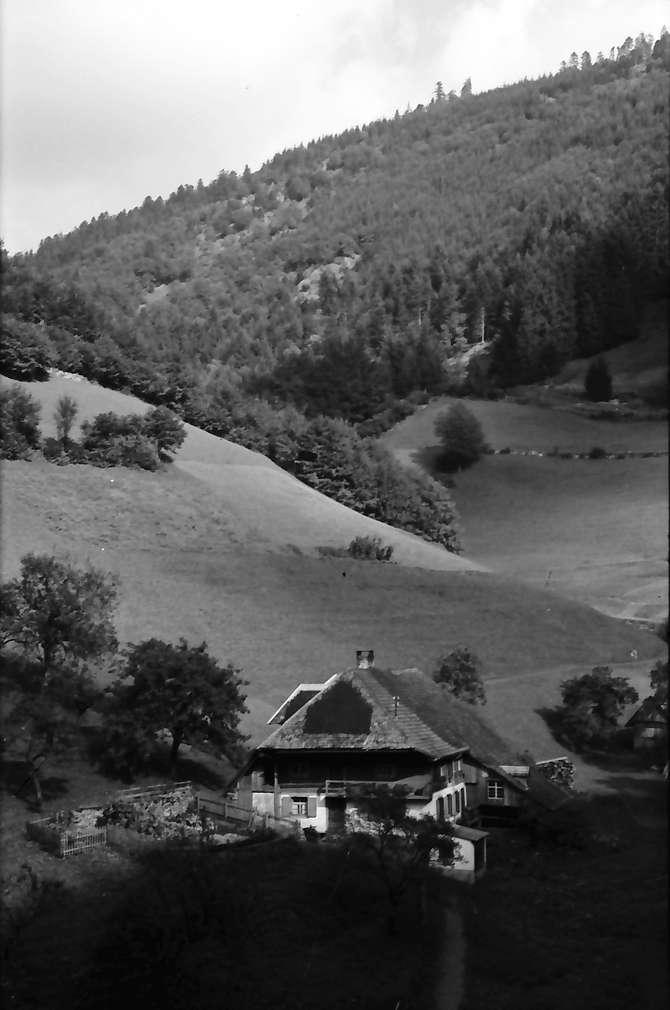 Untermünstertal: Blick ins Münstertal; mit Schwarzwaldhaus, Bild 1