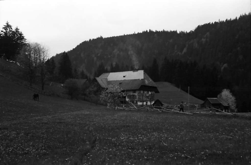 Hinterzarten: Schwarzwaldhaus, Bild 1
