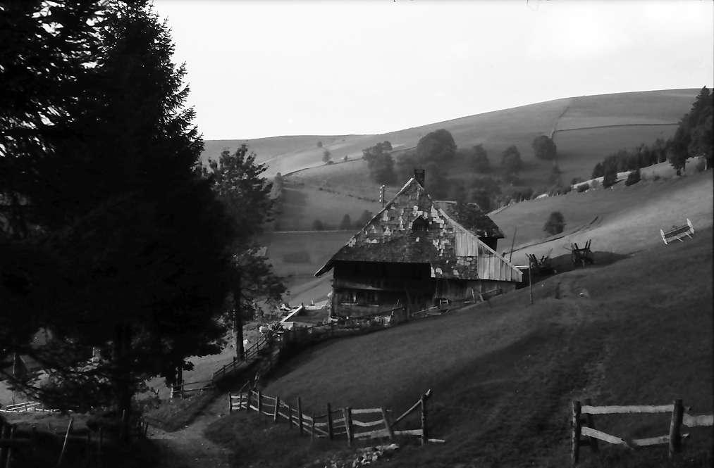 Münstertal: Bauernhof am Weg zum Wiedener Eck, Bild 1
