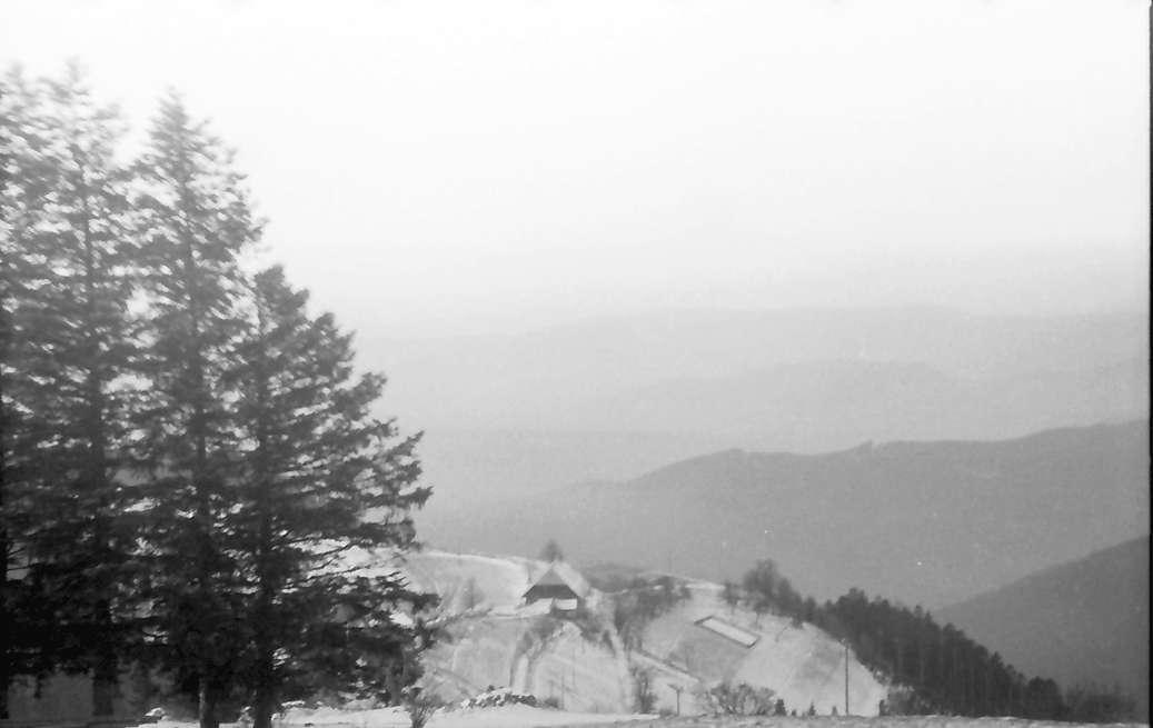 Breitnau: Blick über den Nessellachen ins Tal; links Tannen, Bild 1
