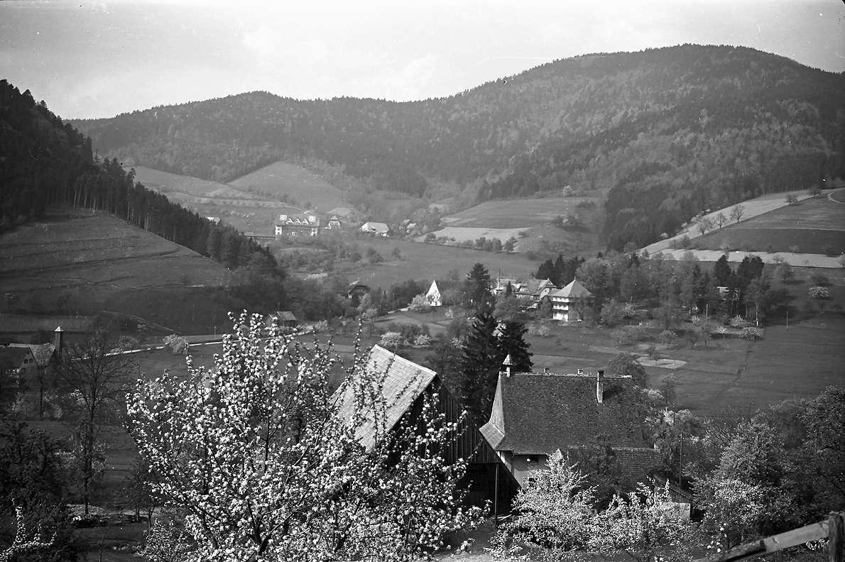 Glottertal: Bauernhof am Glotterbad, Bild 1