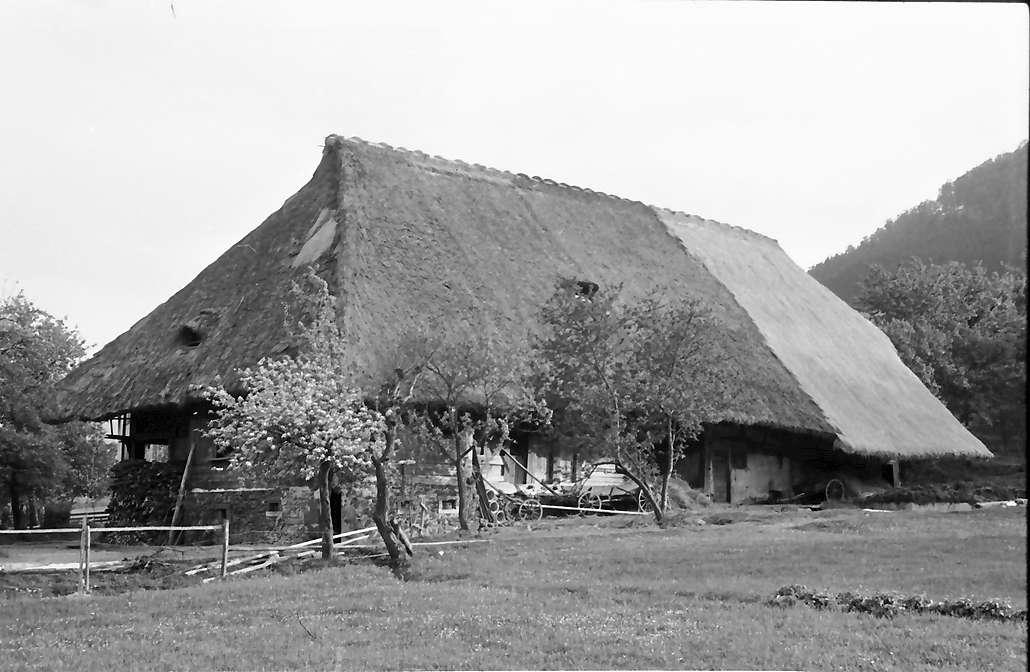 Glottertal: Alter Schwarzwaldhof unter Naturschutz, Bild 1