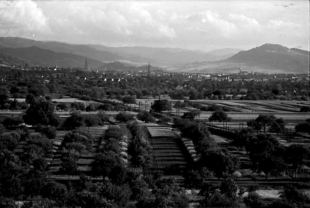 Denzlingen: Fernsicht nach Freiburg, Bild 1