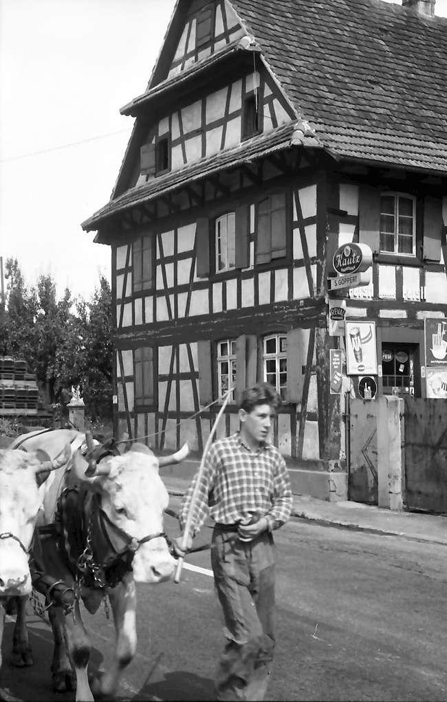 Hofweier: Verunstaltetes Fachwerkhaus durch Reklameschilder, Bild 1