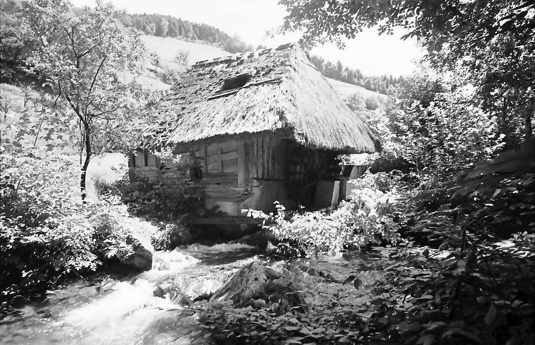 Oberglottertal: Alte Schwarzwaldmühle (1629), Bild 1