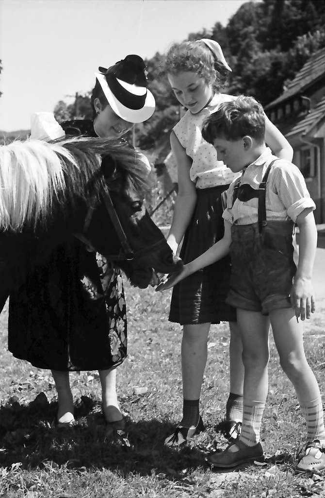 Glottertal: Glottertäler Tracht und Pony, Bild 1