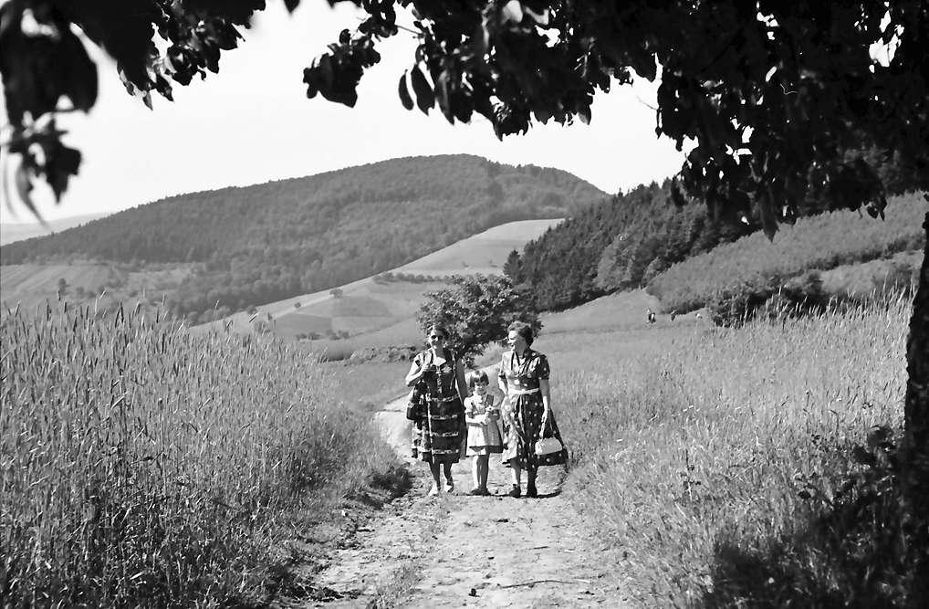 Glottertal: Spitzli - Kind - Frau Heilmann; am Kornfeld; Vordergrund Äste, Bild 1
