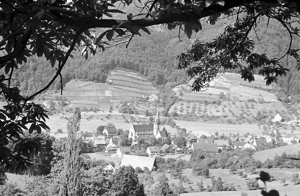 Glottertal: Blick vom Leimeneck auf Ort; Vordergrund, Bild 1