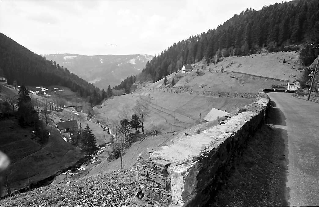 Gütenbach: Oberes Simonswäldertal bei Gütenbach; Vordergrund Straße, Bild 1