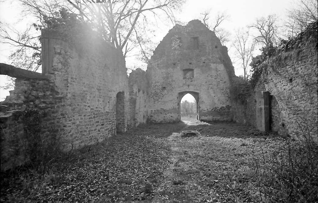 Denzlingen: Ruine St. Severin; Innenraum, Bild 1