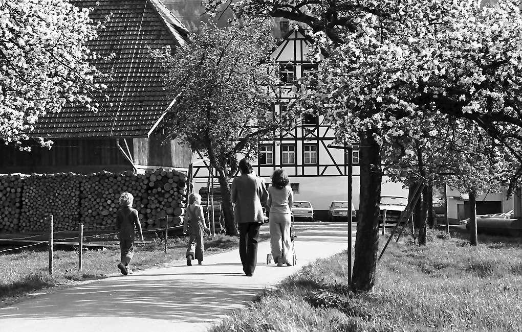 Oberglottertal: Spaziergänger (Familie) unter Blüten; Hintergrund Fachwerkhaus, Bild 1