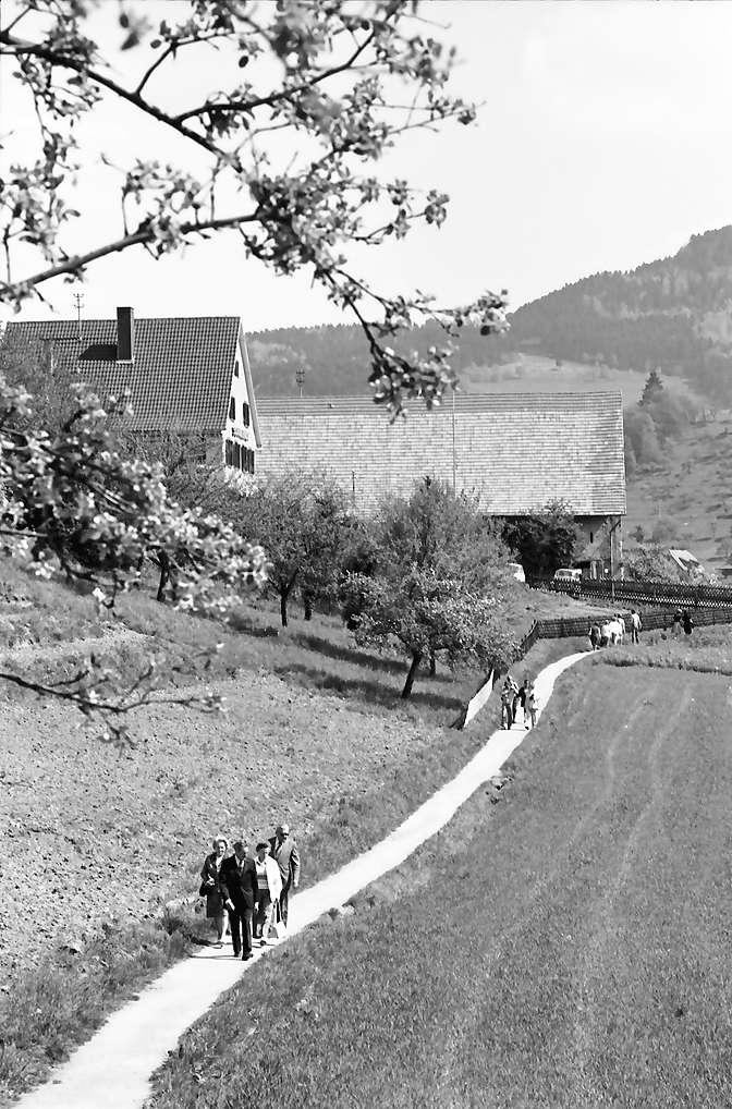 Oberglottertal: Spaziergänger auf unterem Weinbergweg, Bild 1