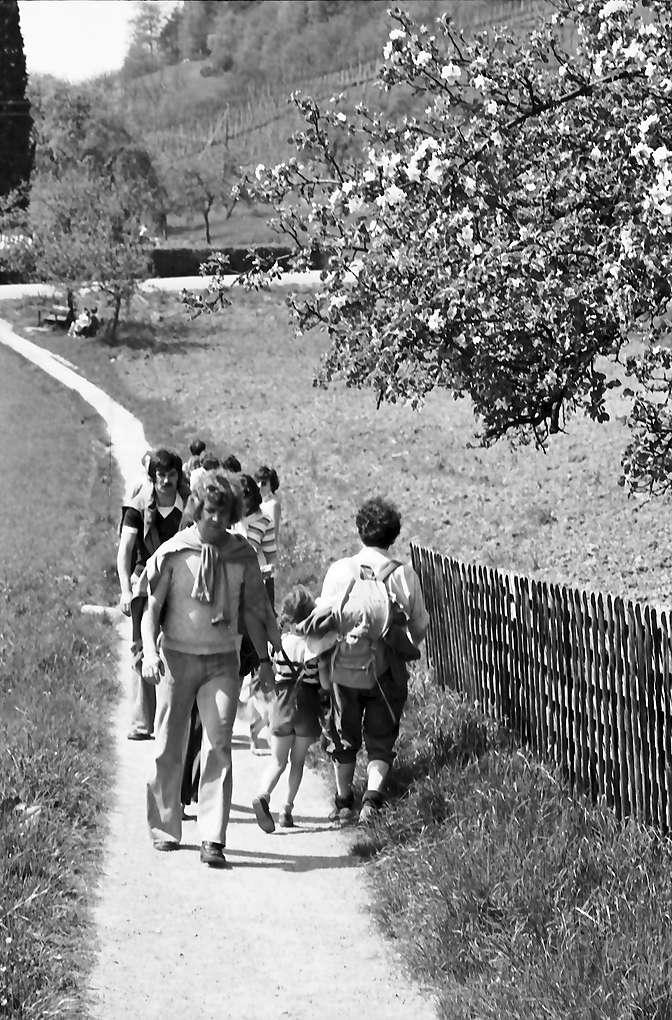 Oberglottertal: Wanderer begegnen sich auf unterem Weinbergweg, Bild 1