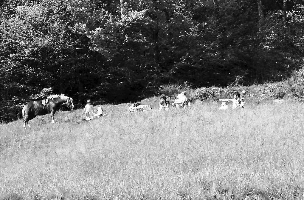 Oberglottertal: Gruppe mit Pferd am Hang (von unten), Bild 1