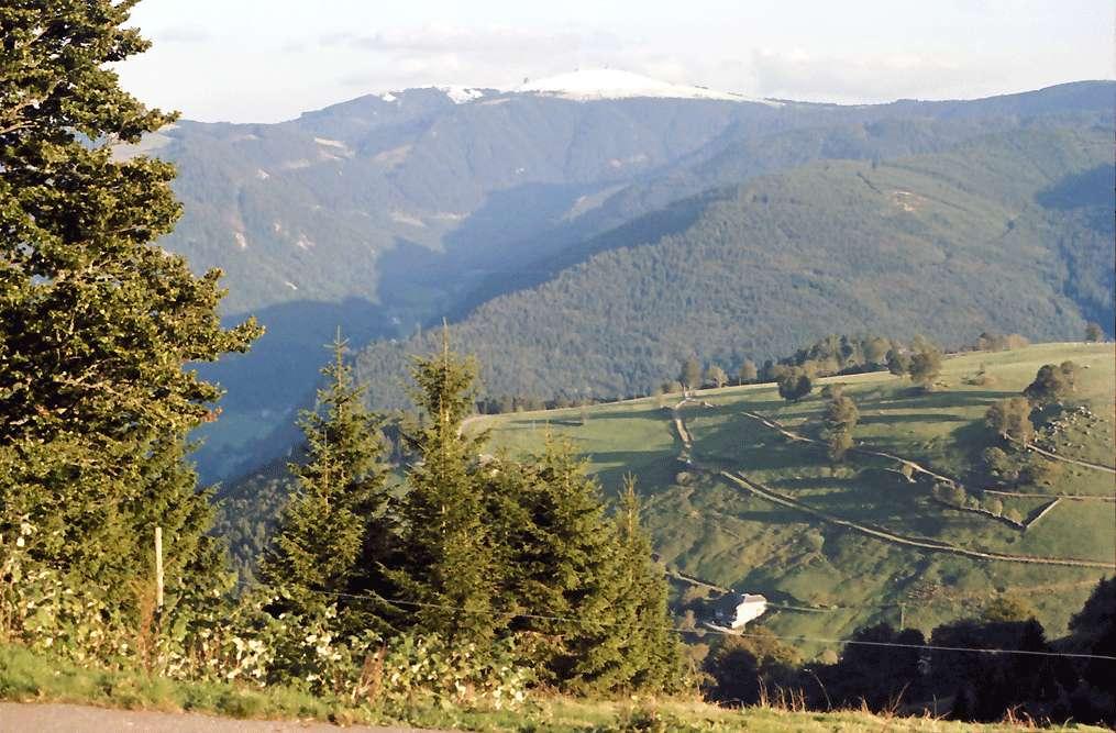 Schauinsland: Feldberg mit Schneehaube; vom Schauinsland, Bild 1