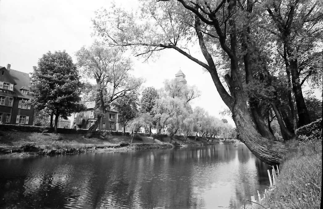 Kehl: Stadtanlagen; Altrhein und Turm der katholischen Kirche, Bild 1