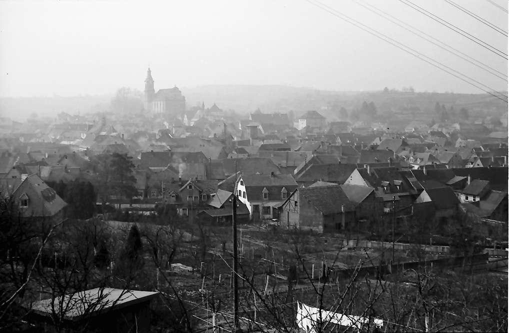 Ettenheim: Blick über Weinberge auf Ettenheim, Bild 1