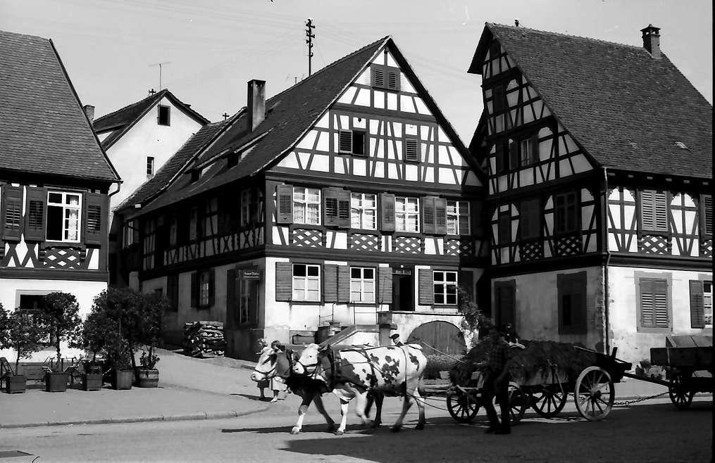 Gengenbach: Fachwerkhäuser in der Victor-Kretz-Straße, Bild 1