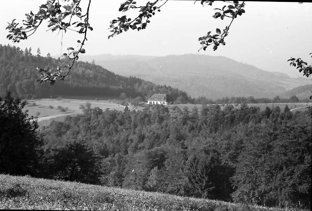 Pflingsteck; Freiamt: Von der Höhe auf Passhöhenhotel, Bild 1