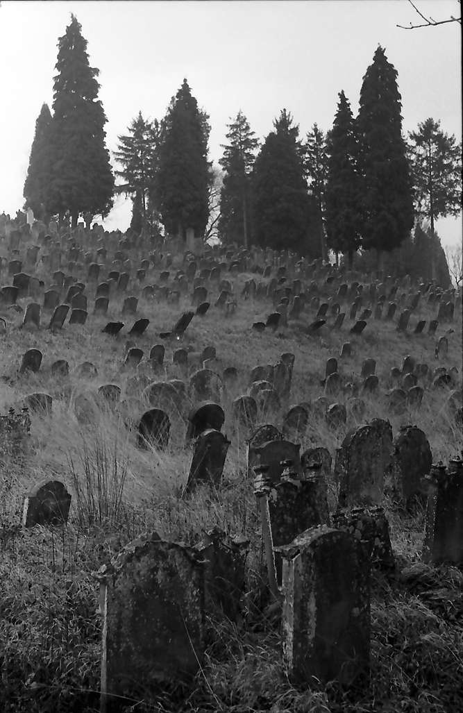 Schmieheim: Judenfriedhof bei Schmieheim, Bild 1