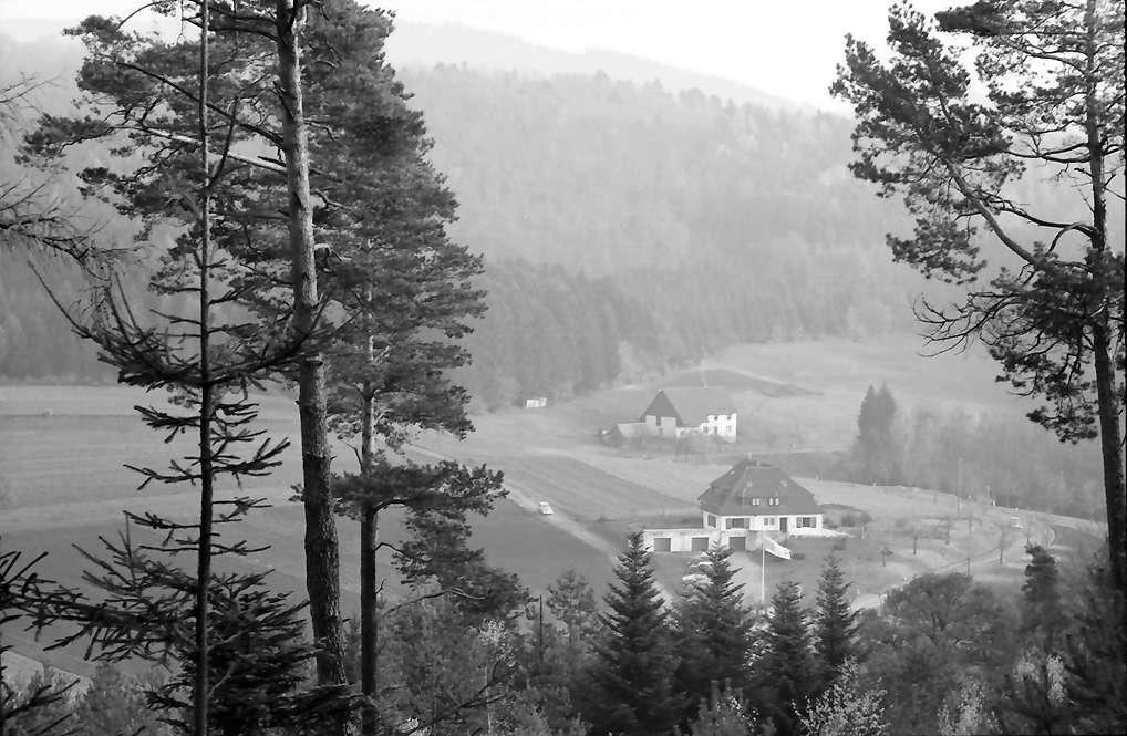 Pflingsteck; Freiamt: Passhöhenhotel Pflingsteck; Blick von der Höhe durch Wald auf Hotel, Bild 1