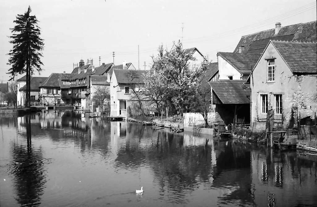 Kenzingen: Partie am Mühlbach, Bild 1