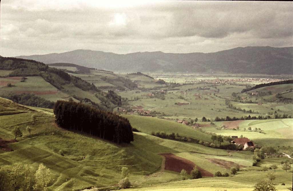 Oberried: Blick von oben; mit dunklem Wäldchen am Hang, Bild 1