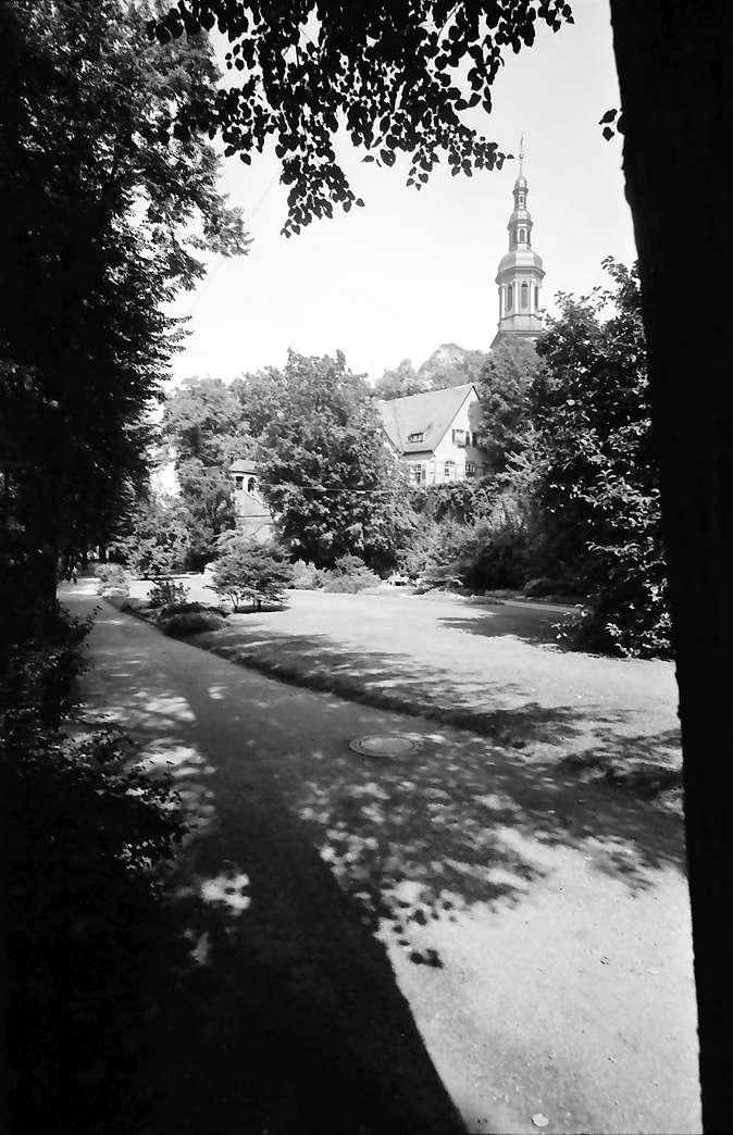 Offenburg: Stadtpark mit Turm der Kirche, Bild 1