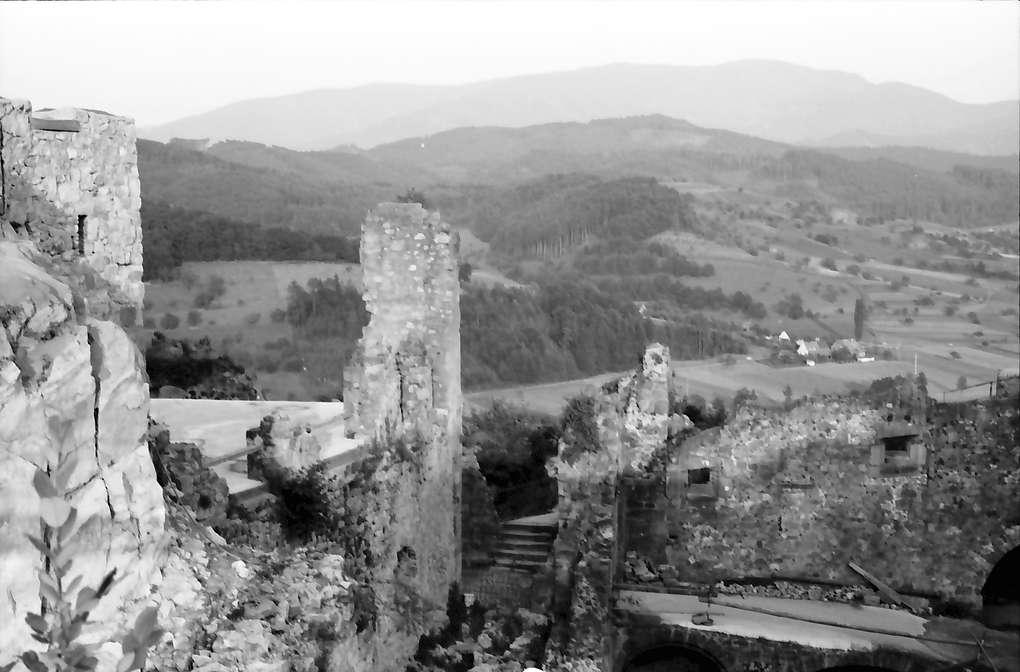 Windenreute: Hochburg; Giebelseite von Süd; mit Landschaft gegen Kandel, Bild 1