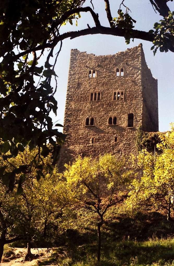 Oberkirch: Schauenburg: 11. Jahrhundert; die Herzöge von Zähringen; Turm, Bild 1