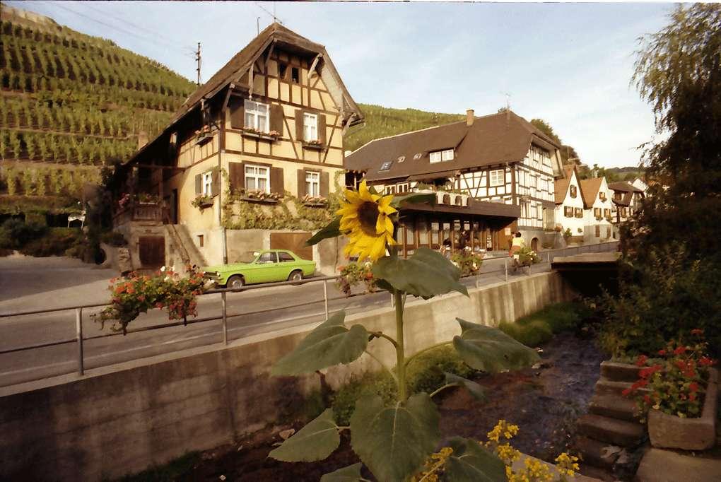 Durbach: Winzerhaus im Weinberg, Bild 1