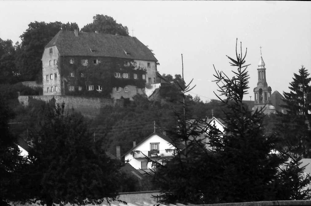 Mahlberg: Schloss; von weiter, Bild 1