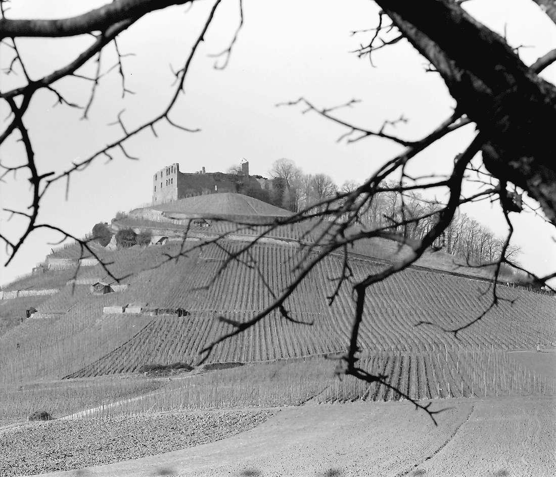 Staufen: Staufener Burg von Osten, Bild 1