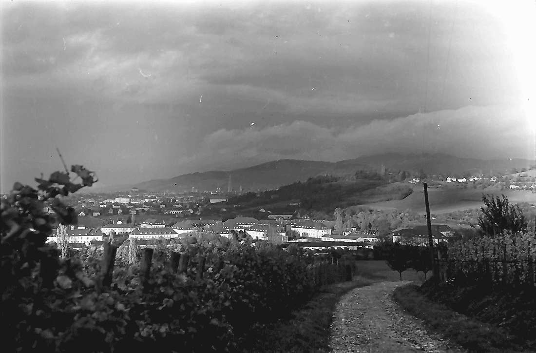 Merzhausen: Weg in den Weinbergen bei Merzhausen, Bild 1