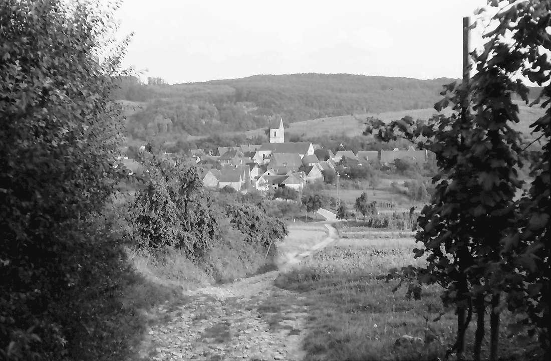 Pfaffenweiler: Blick vom Weinberg auf das Dorf, Bild 1