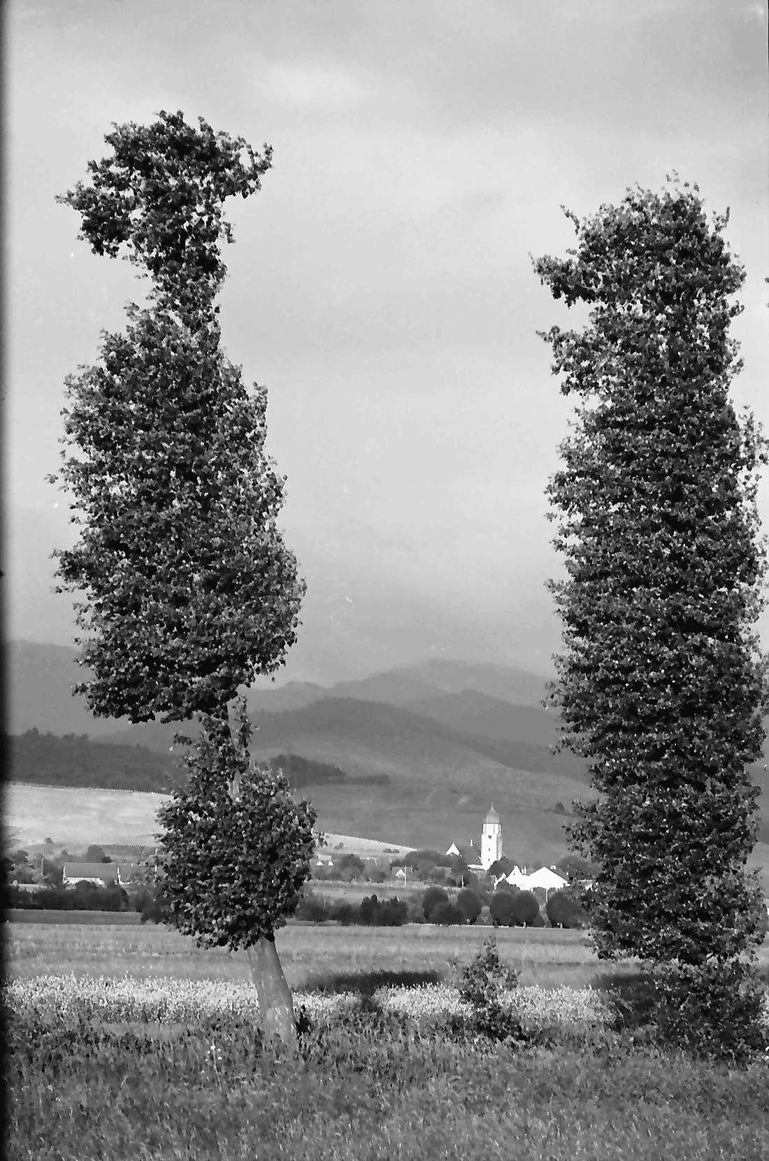 Norsingen: Gewitterbeleuchtung an der Möhlin; Blick auf Kirchhofen; bei Norsingen, Bild 1