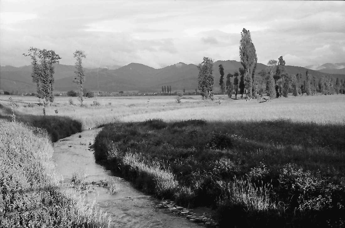Norsingen: Gewitterbeleuchtung an der Möhlin; Blick auf Kirchhofen; mit Möhlin im Vordergrund, Bild 1